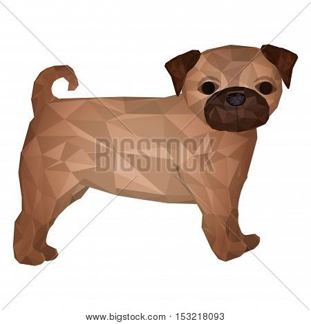 pug dog breed animal. abstract design over white background. vector illustration