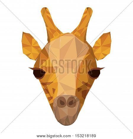 giraffe wildlife animal with abstract design over white background. vector illustration