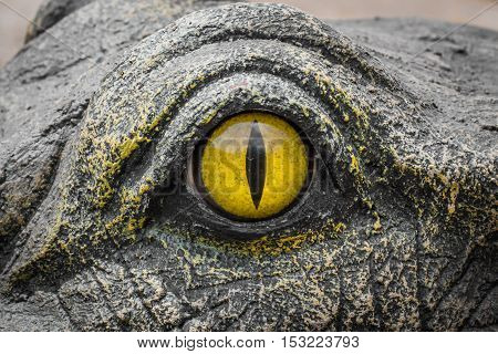 Yellow Eyes Of Crocodiles.