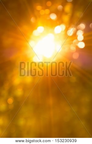 Autumn or summer background with a magnificent sun burst