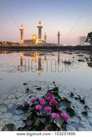 View and reflection of Bukit Jelutong Mosque with purple lotus in the lake during sunrise