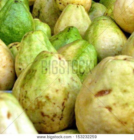 Guava fruit on bazaar in Tel Aviv IsraelSeptember 27 2012