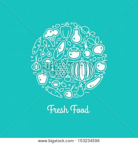 Fresh food vector set. Harvest illustration in line style. Farm nature healty vegan vegetables. Organic fall banner. Autumn festival.