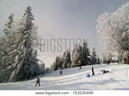 Lviv region Ukraine - January 3 2011: Skiers on a at ski resort in Carpathian mountains Ukraine