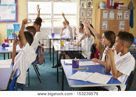 Pupils raise hands in a lesson at primary school, side view