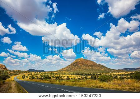 The asphalt road in Namibia in the savannah. Low trees and autumn yellow grass
