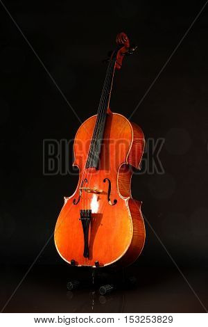 Musical instruments / Cello on a black background