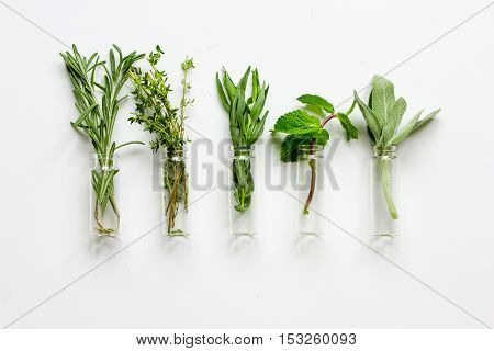 mint, sage, rosemary, thyme - glass bottles aromatherapy white background top view