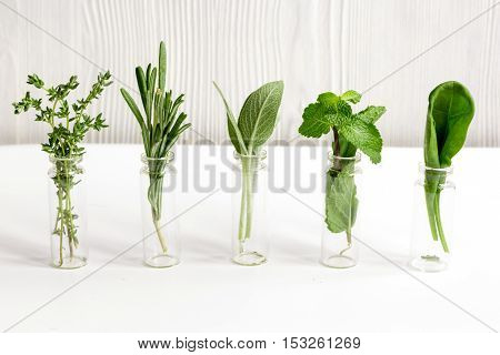 mint, sage, rosemary, thyme - glass bottles aromatherapy white background