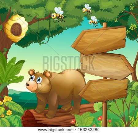 Scene with bear and wooden signs illustration