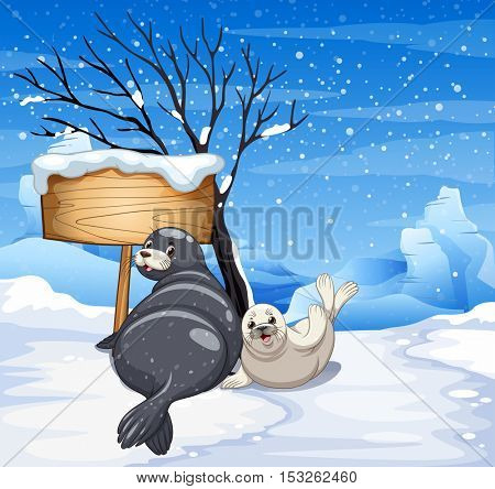 Two seals on snowy day illustration