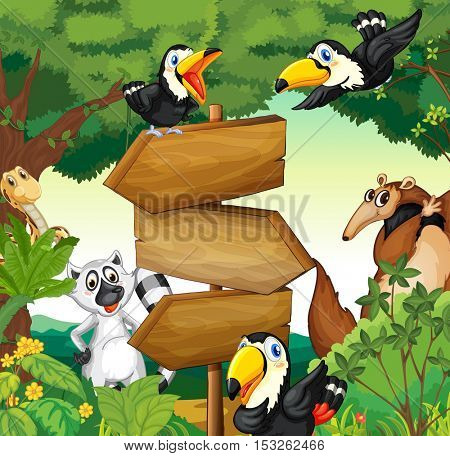 Wild animals around the wooden sign in woods illustration