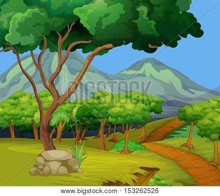 Scene with hiking track in the woods illustration