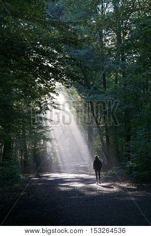 unrecognizable jogger running through dark wood silhouetted against shaft of sunlight