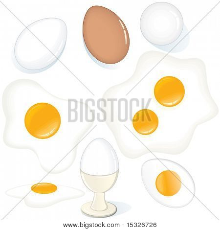 Assorted Eggs-vector set of Fresh, Fried, Raw, Boiled Chicken Eggs.