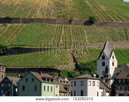 A German town along the banks of the Rhine River with multiple vineyards on the mountains in the background. Germany. Travel and tourism concept.