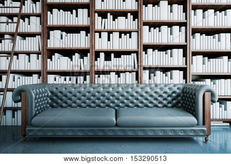 Grey Sofa In Library