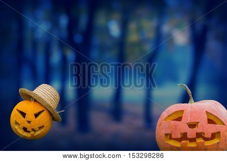 two pumpkins on a background of the evening forest