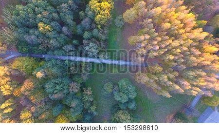 Bridge in autumn in park by drone