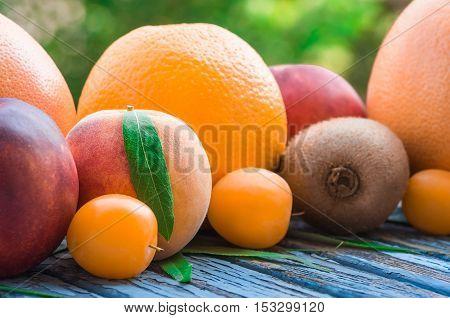 ripe fruit kiwi peach plum grapefruit nectarine orange close