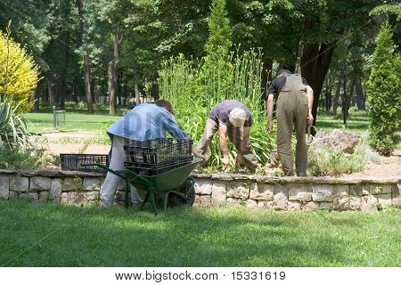 Workers in the park