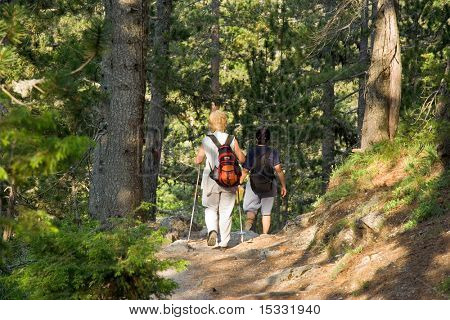 Seniors trekking in the forest