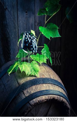 Grapes And Vines In A Glass Of Wine On An Old Barrel