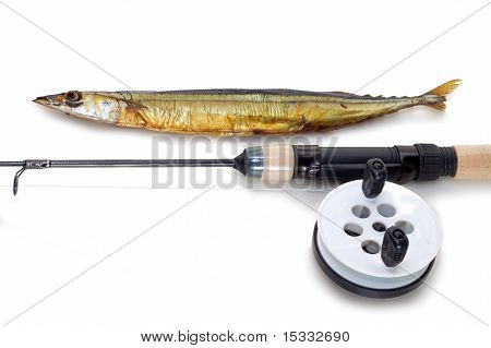 Caught on a fishing tackle needlefish