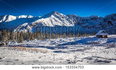 Enjoy Your Winter Time In Cold Mountains, Tatras, Poland