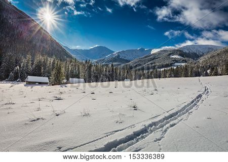 Traces Of Skis On The Snow In The Tatras At Sunset In Winter, Poland