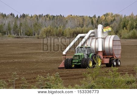 Miramichi, NB, October 17, 2016 -- Tractor pulling large vacuum type farm equipment through a plowed field with autumn foliage near Miramichi NB on a slightly overcast but bright day in October.