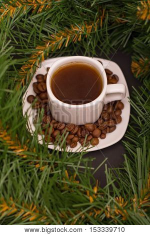 Small white cup of coffee coffee beans and fir branch