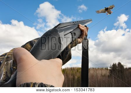 hands of hunter in camouflage shooting from shotgun to flying duck