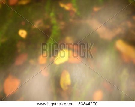 Defocused Leaves In Water For Natural Background. Blurred And Defocused Colors