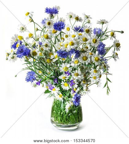 Bouquet of chamomiles and cornflowers in the vase on the white background.