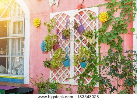 colorful windows with decorative flower pots