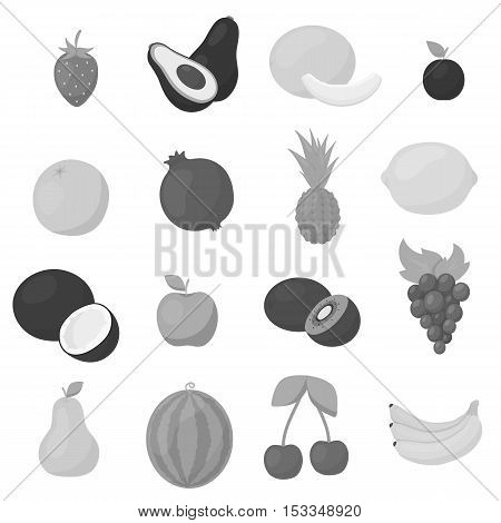 Fruits set icons in monochrome style. Big collection of fruits vector symbol stock