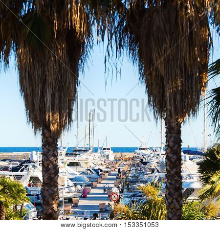 Sea bay with yachts and boats at sunset. Mooring for boats in San Remo, Italy.