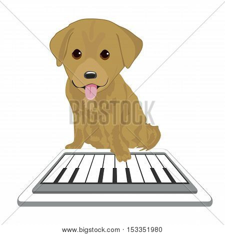 Labrador puppy touching screen tablet playing with piano app over white background
