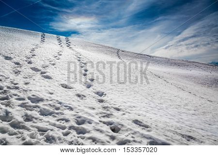 Footprints In The Snow Leading To The Top, Alps, Austria
