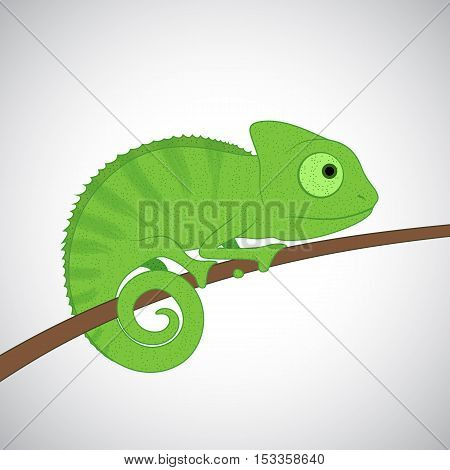 Little green chameleon cartoon character sitting on tree branch isolated