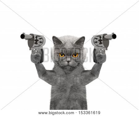 Cat with guns is murderer - isolated on white