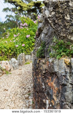 walkway paved road turn around stone with flowers