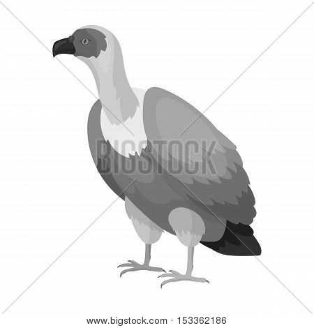 Vulture icon in monochrome style isolated on white background. Bird symbol vector illustration.