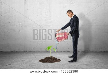 Seedling growing from cement and a businessman using a bucket to water it on a grey background. Taking care of a small business. Helping to grow. Supporting development.