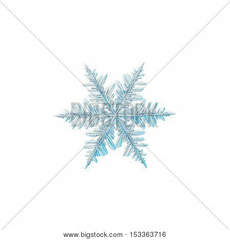 Snowflake isolated on white background. This is macro photo of real snow crystal with complex ornate arms and fine symmetry.