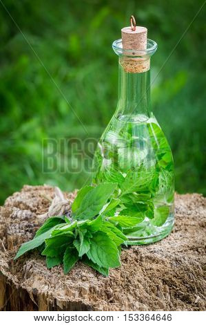 Healthy And Homemade Liqueur With Mint And Alcohol