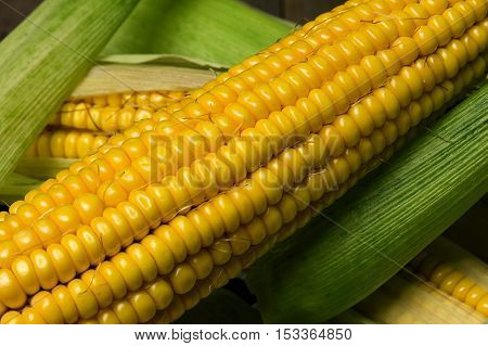 Ripe yellow sweet corn cob on a wooden table close-up