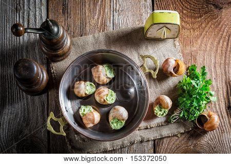 Homemade snails with garlic butter and hebrs