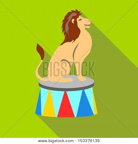 Lion circus sitting icon. Flat illustration of lion circus vector icon for web isolated on green background